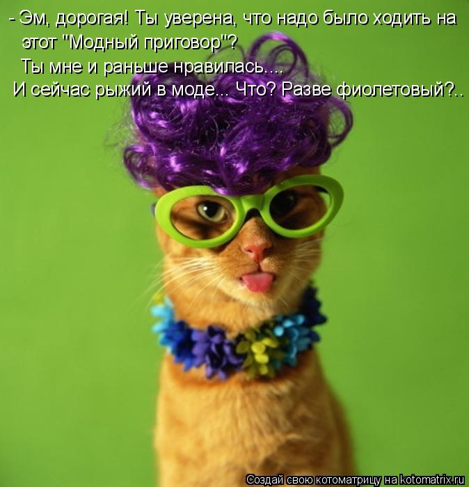 """Котоматрица: - Эм, дорогая! Ты уверена, что надо было ходить на этот """"Модный приговор""""? Ты мне и раньше нравилась.... И сейчас рыжий в моде... Что? Разве фиолет"""