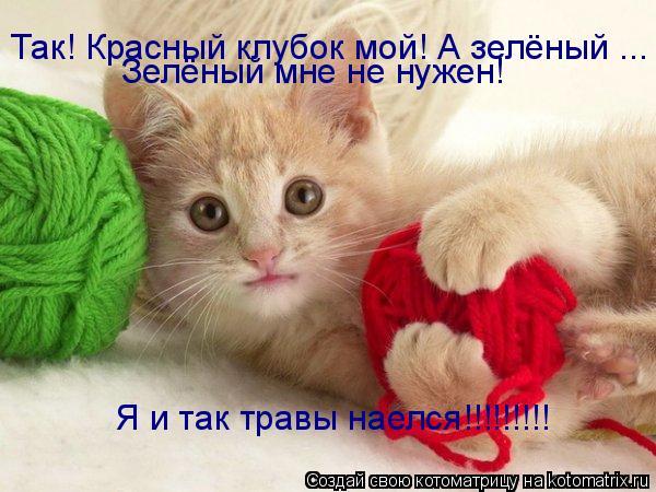Котоматрица: Так! Красный клубок мой! А зелёный ... Зелёный мне не нужен! Я и так травы наелся!!!!!!!!!