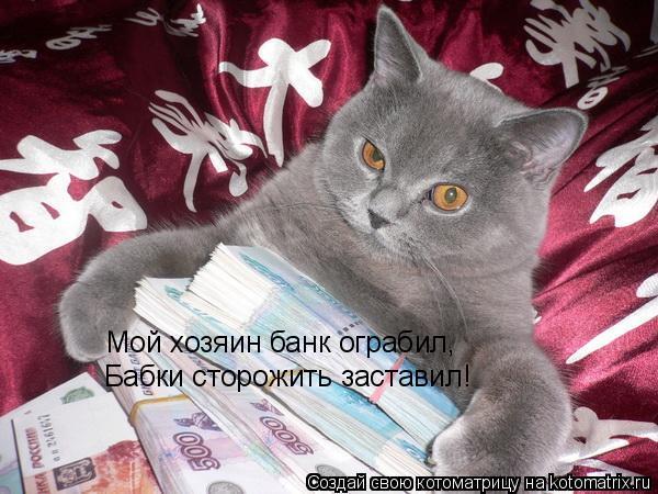 Котоматрица: Мой хозяин банк ограбил, Бабки сторожить заставил!