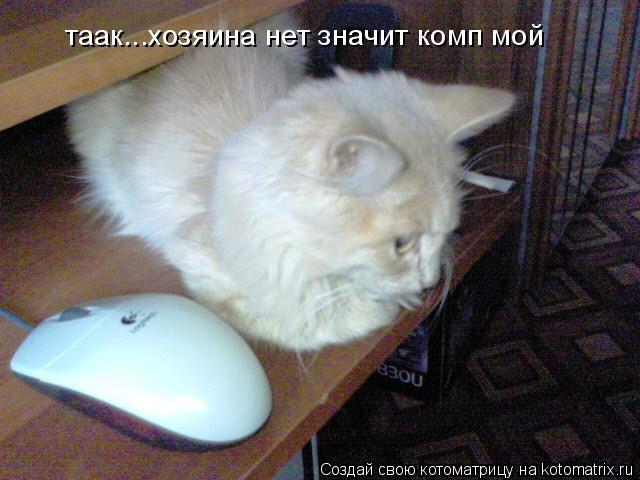 Котоматрица: таак...хозяина нет значит комп мой