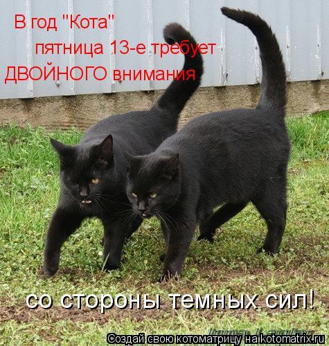 """Котоматрица: В год """"Кота"""" пятница 13-е требует  ДВОЙНОГО внимания  со стороны темных сил!"""