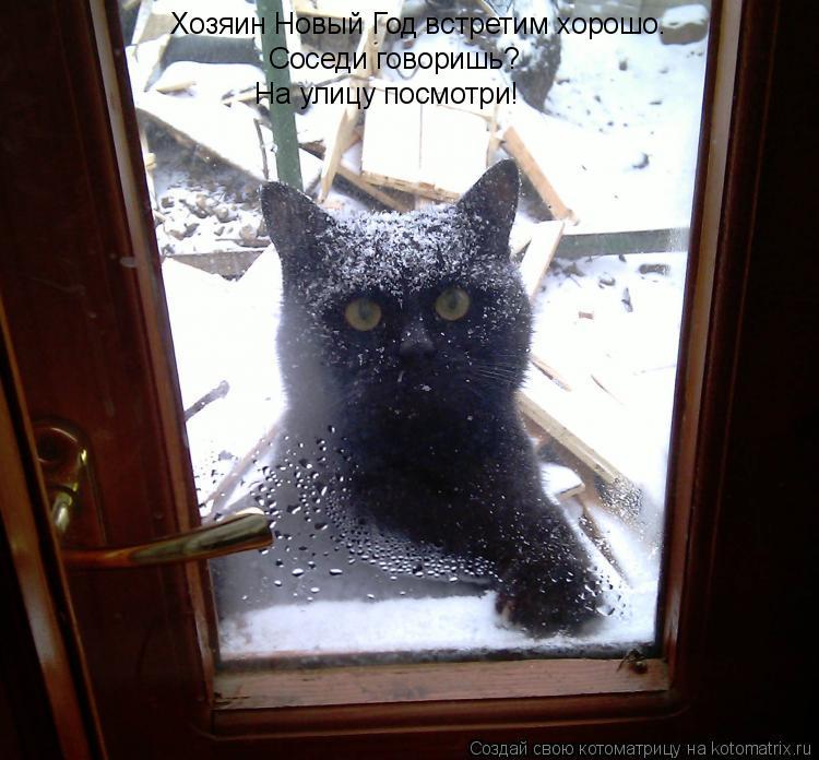 Котоматрица: Хозяин Новый Год встретим хорошо. Соседи говоришь? На улицу посмотри!