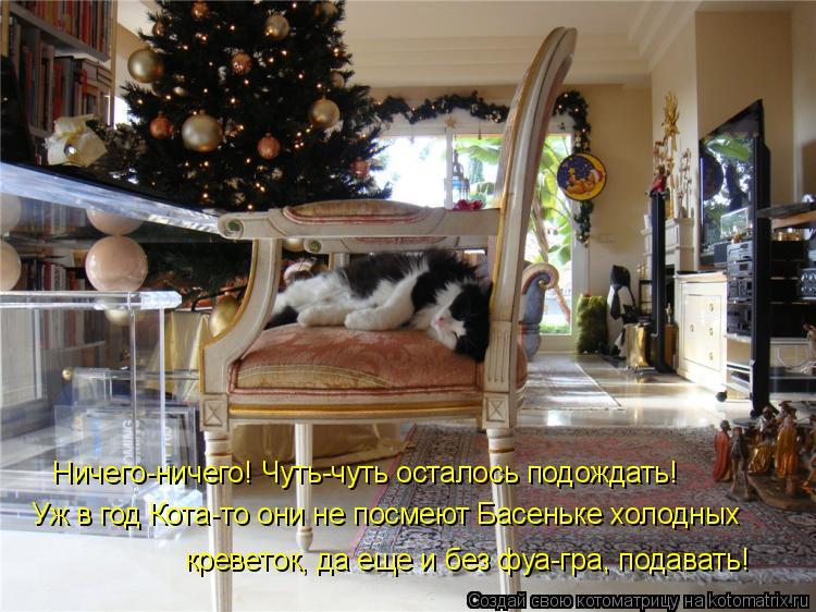 Котоматрица: Ничего-ничего! Чуть-чуть осталось подождать!  Уж в год Кота-то они не посмеют Басеньке холодных креветок, да еще и без фуа-гра, подавать!