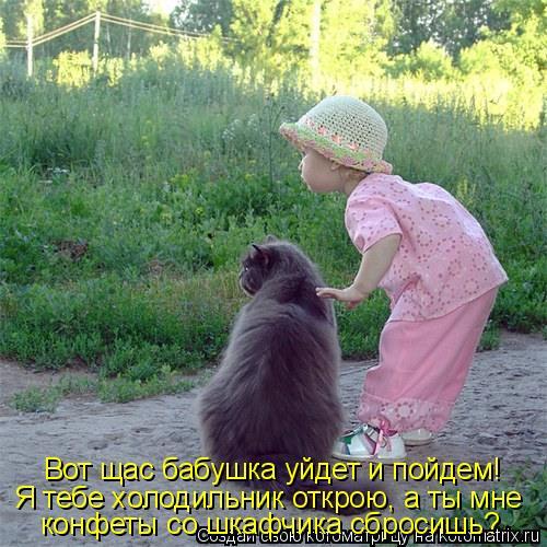 Котоматрица: Вот щас бабушка уйдет и пойдем! Я тебе холодильник открою, а ты мне конфеты со шкафчика сбросишь?