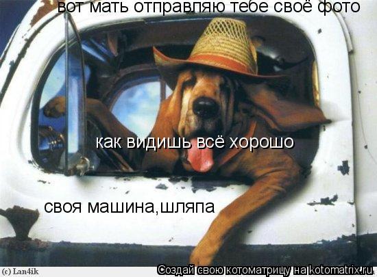 Котоматрица: вот мать отправляю тебе своё фото как видишь всё хорошо  своя машина,шляпа