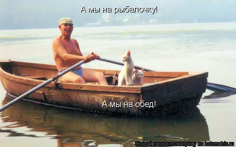 Котоматрица: А мы на рыбалочку! А мы на обед! А мы на рыбалочку!