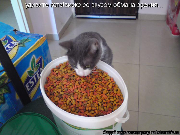 Котоматрица: удивите кота!вискс со вкусом обмана зрения...