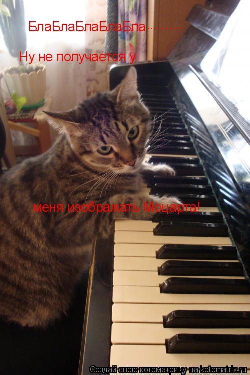 Котоматрица: БлаБлаБлаБлаБла Ну не получается у  меня изображать Моцарта! ..........
