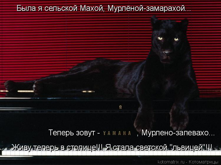 """Котоматрица: Была я сельской Махой, Мурлёной-замарахой... Теперь зовут -                 , Мурлено-запевахо... Живу теперь в столице!!! Я стала светской """"львицей""""!"""