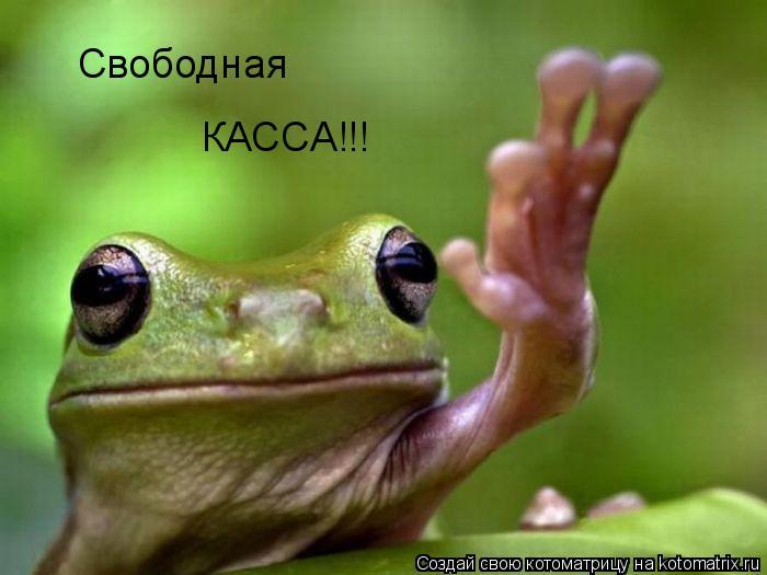 Котоматрица: Свободная КАССА!!!