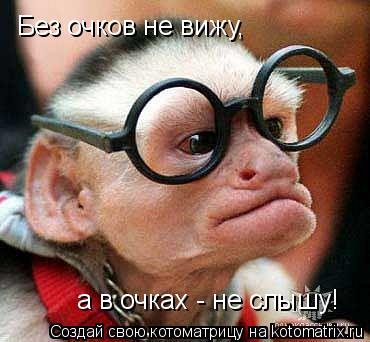 Котоматрица: Без очков не вижу, а в очках - не слышу!