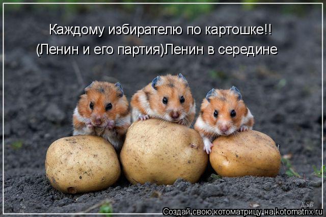 Котоматрица: Каждому избирателю по картошке!! (Ленин и его партия)Ленин в середине