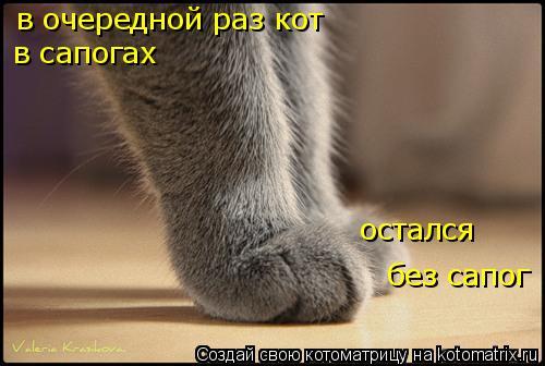 Котоматрица: в очередной раз кот в сапогах остался без сапог