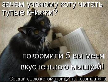 Котоматрица: зачем ученому коту читать тупые книжки? покормили б вы меня вкусненькою мышкой!
