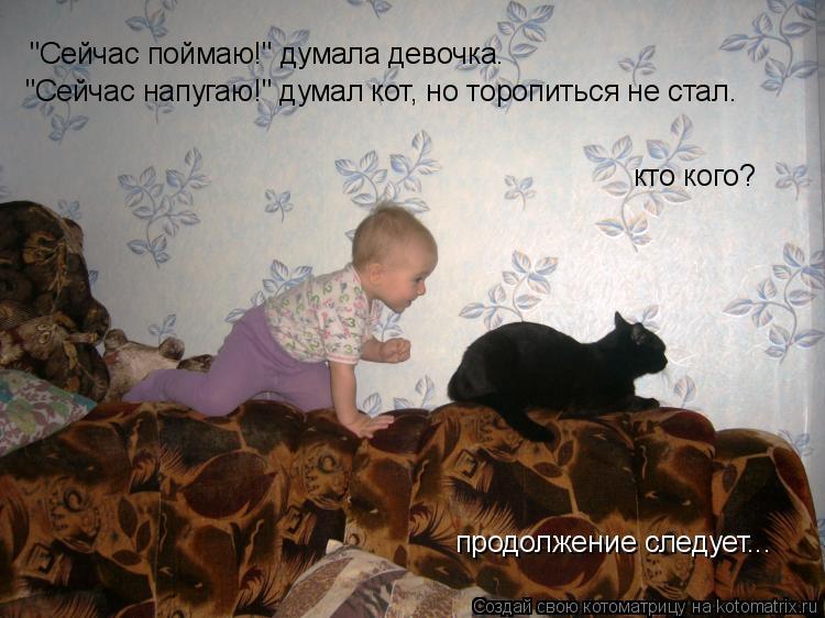 """Котоматрица: """"Сейчас поймаю!"""" думала девочка. """"Сейчас напугаю!"""" думал кот, но торопиться не стал. кто кого? продолжение следует..."""