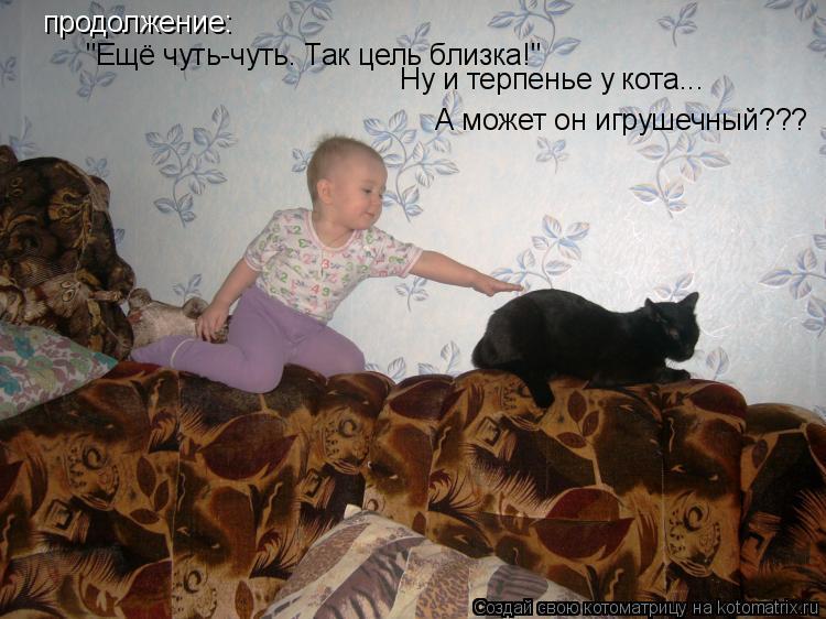 """Котоматрица: продолжение: """"Ещё чуть-чуть. Так цель близка!"""" Ну и терпенье у кота... А может он игрушечный???"""