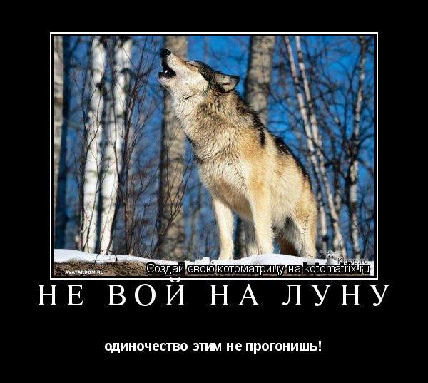 волчий вой на смс страница