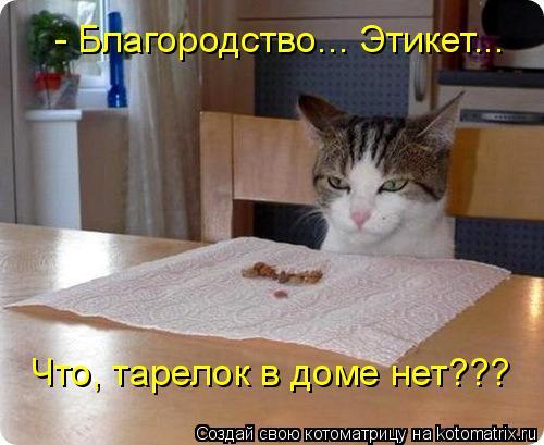 Котоматрица: - Благородство... Этикет... Что, тарелок в доме нет???