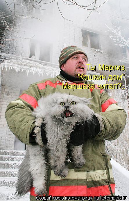 "Котоматрица: - Ты Маркиз, ""Кошкин дом"" Маршака читал?.."