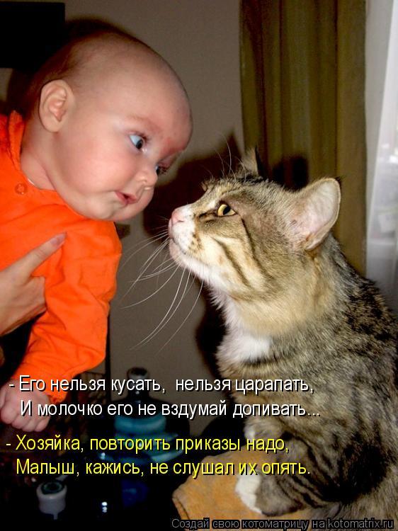 Котоматрица: - Его нельзя кусать,  нельзя царапать, - Хозяйка, повторить приказы надо, Малыш, кажись, не слушал их опять. И молочко его не вздумай допивать...