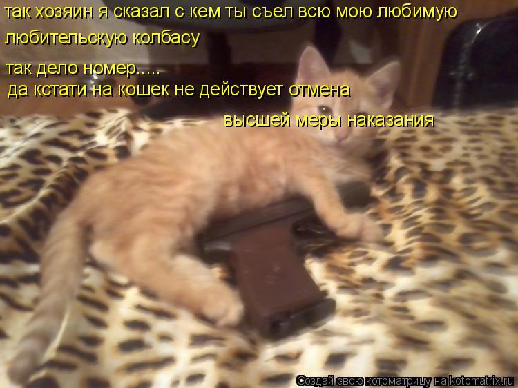 Котоматрица: так хозяин я сказал с кем ты съел всю мою любимую любительскую колбасу так дело номер..... да кстати на кошек не действует отмена  высшей меры
