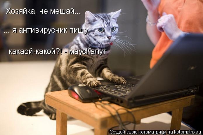 Котоматрица: Хозяйка, не мешай... ... я антивирусник пишу... какаой-какой?! - маусКапут