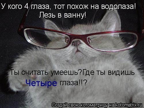 Котоматрица: У кого 4 глаза, тот похож на водолаза! Лезь в ванну! Ты считать умеешь?Где ты видишь  Четыре глаза!!?