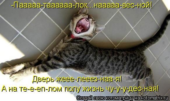 -Пааааа-таааааа-лок...нааааа-вес-ной! Дверь жеее-лееез-наа-я! А на те-