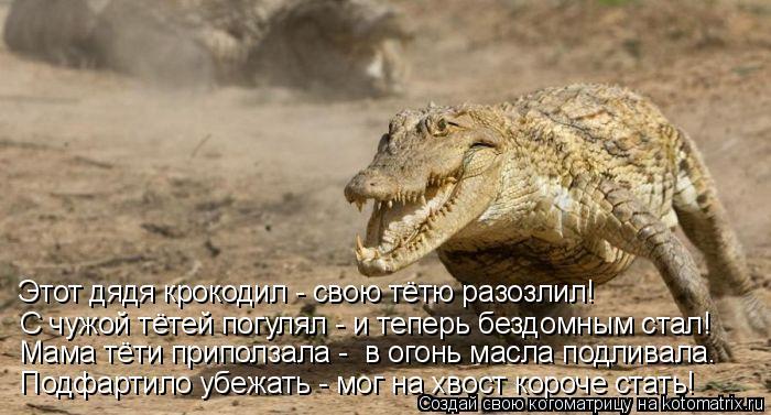 Котоматрица: С чужой тётей погулял - и теперь бездомным стал! Этот дядя крокодил - свою тётю разозлил! Мама тёти приползала -  в огонь масла подливала. Подф
