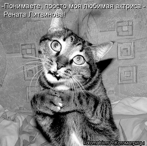 Котоматрица: -Понимаете, просто моя любимая актриса -  Рената Литвинова!