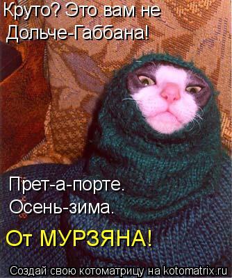 Котоматрица: Круто? Это вам не Дольче-Габбана! Прет-а-порте. Осень-зима. От МУРЗЯНА!