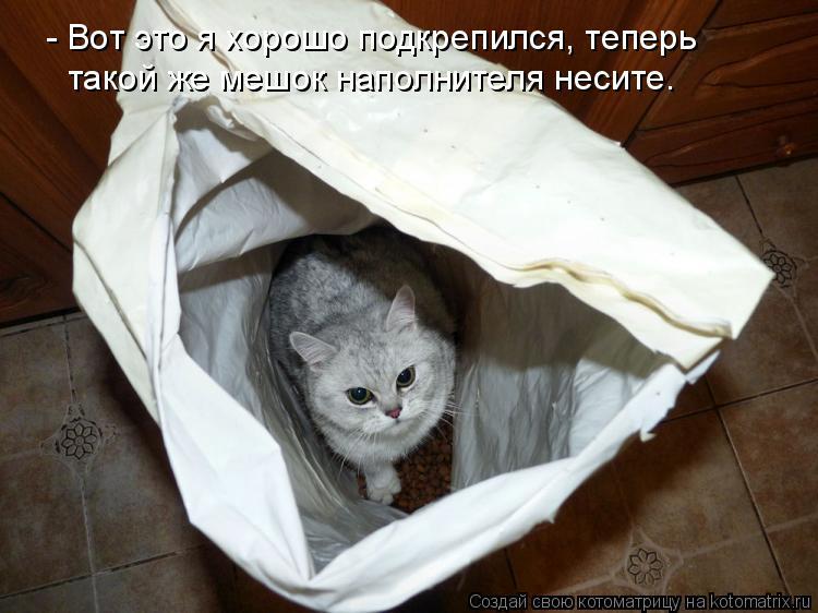 Котоматрица: - Вот это я хорошо подкрепился, теперь  такой же мешок наполнителя несите.