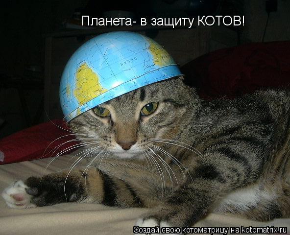 Котоматрица: Планета- в защиту КОТОВ!