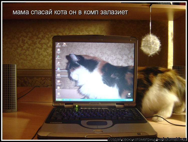 Котоматрица: мама спасай кота он в комп залазиет