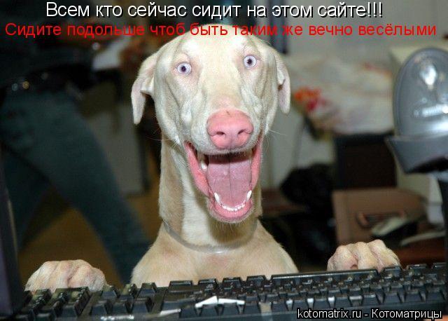 Котоматрица: Всем кто сейчас сидит на этом сайте!!! Сидите подольше чтоб быть таким же вечно весёлыми