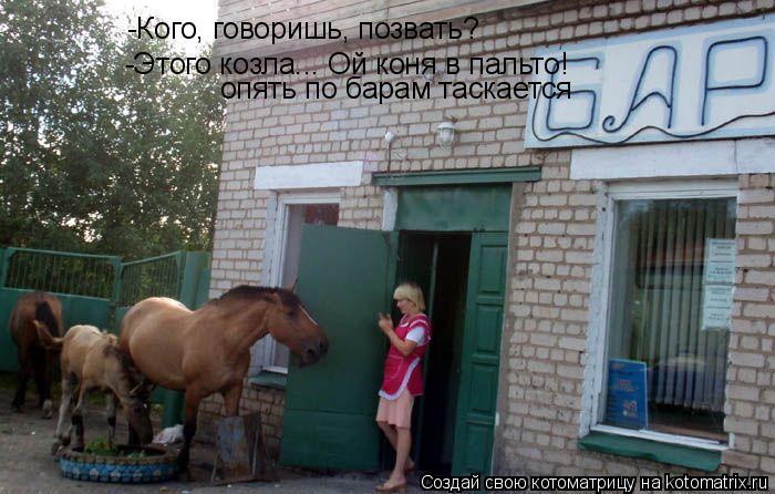 Котоматрица: -Кого, говоришь, позвать? -Этого козла... Ой коня в пальто! опять по барам таскается
