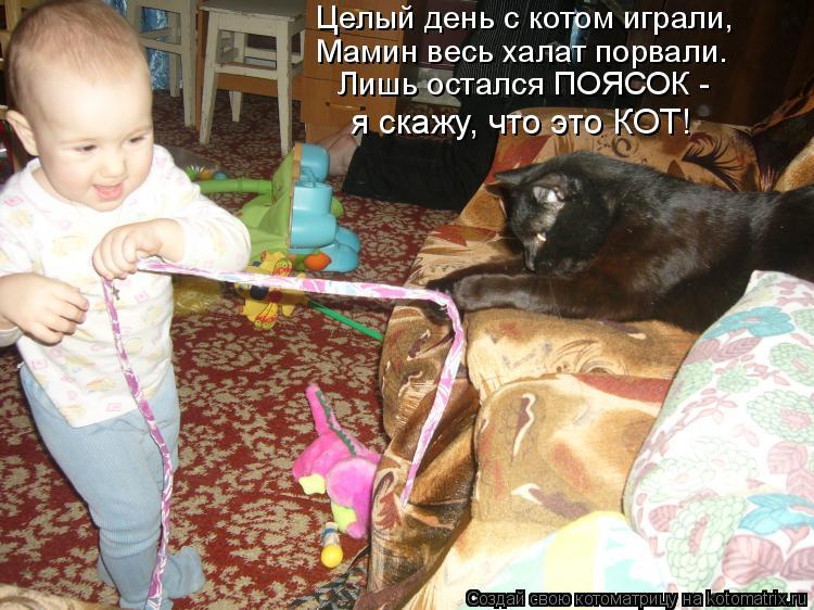 Котоматрица: Целый день с котом играли, Мамин весь халат порвали. Лишь остался ПОЯСОК - я скажу, что это КОТ!