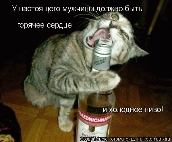 Котоматрица: У настоящего мужчины должно быть  горячее сердце  и холодное пиво!