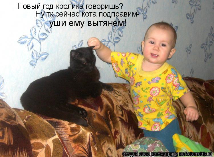 Котоматрица: Новый год кролика говоришь? Ну тк сейчас кота подправим- уши ему вытянем!
