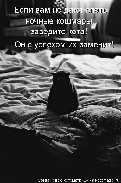 Котоматрица: Если вам не дают спать  ночные кошмары,  заведите кота! Он с успехом их заменит!