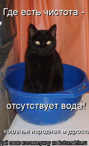 Котоматрица: Где есть чистота -  отсутствует вода! кошачья народная мудрость