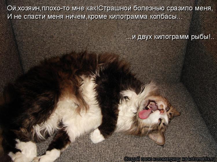 Котоматрица: Ой,хозяин,плохо-то мне как!Страшной болезнью сразило меня, И не спасти меня ничем,кроме килограмма колбасы... ...и двух килограмм рыбы!..