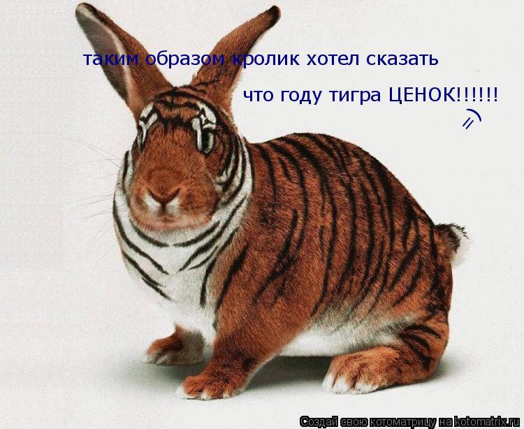 Котоматрица: таким образом кролик хотел сказать что году тигра ЦЕНОК!!!!!! =)