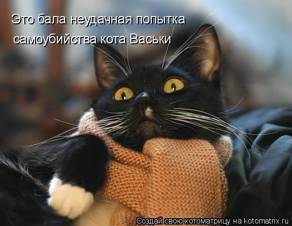 Котоматрица: Это бала неудачная попытка самоубийства кота Васьки