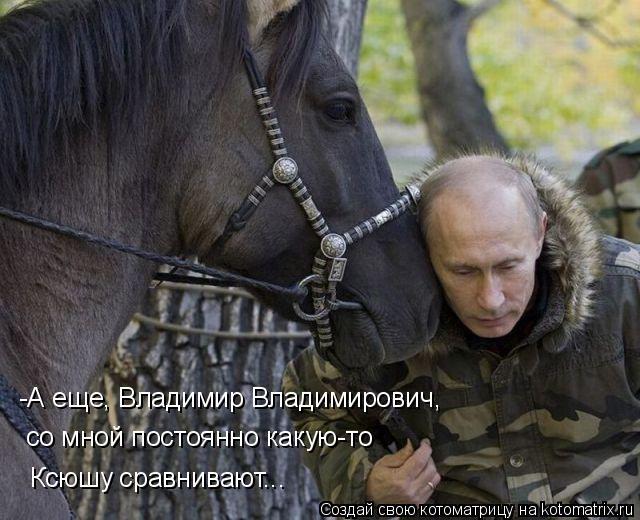 Котоматрица: -А еще, Владимир Владимирович, со мной постоянно какую-то Ксюшу сравнивают...