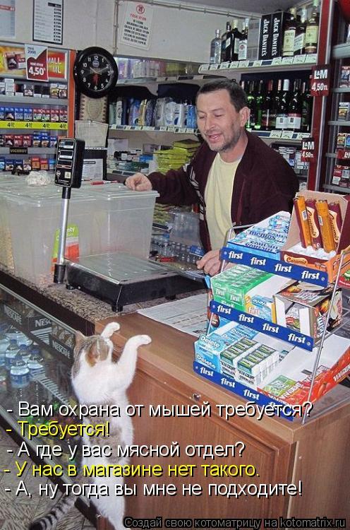 Котоматрица: - Вам охрана от мышей требуется? - Требуется! - А где у вас мясной отдел? - У нас в магазине нет такого. - А, ну тогда вы мне не подходите!