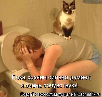 Котоматрица: Пока хозяин сильно думает,  я очень сочувствую!