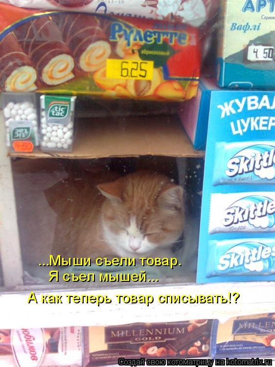 Котоматрица: ...Мыши съели товар. Я съел мышей... А как теперь товар списывать!?