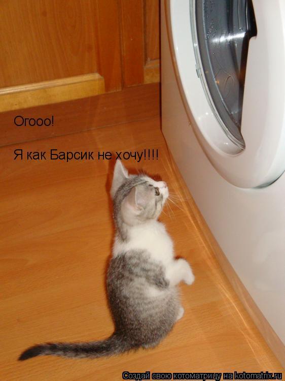 Котоматрица: Я как Барсик не хочу!!!! Огооо!
