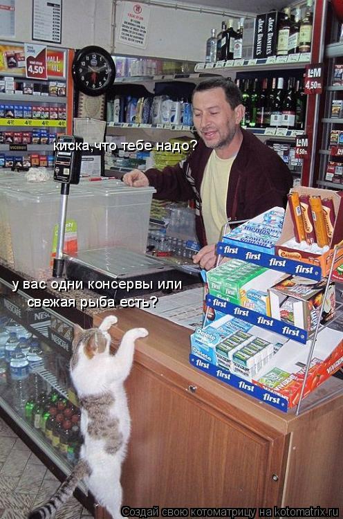 Котоматрица: киска,что тебе надо? у вас одни консервы или свежая рыба есть? свежая рыба есть?